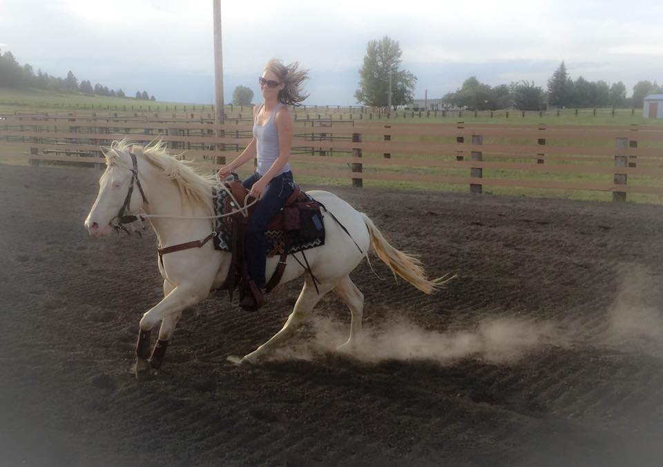 Person riding a white horse